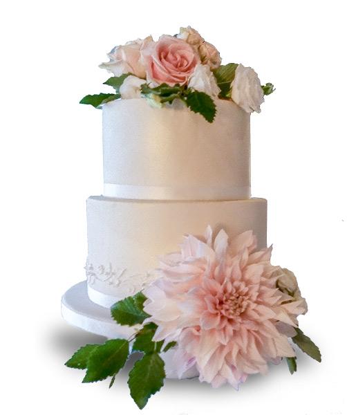 Cake Decorating Classes Tauranga